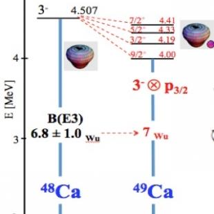 Particle-vibration coupling